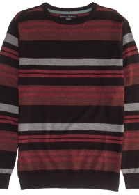 Boys' Rooted Crew Sweater